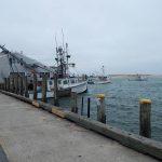 Chatham Fishing Pier View